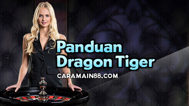 panduan dragon tiger